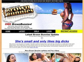 Brown Bunnies Porn Review