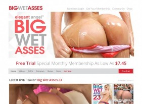 Big Wet Asses Porn Review